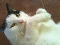 Awww, Piper - is so cute.